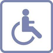 Handicap Moteur (Logo)